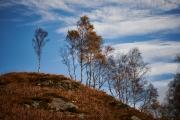 20171029_Scotland_1456_1200