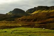 20171027_Scotland_1235_1200