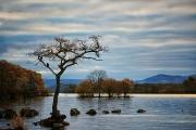 20171102_Scotland_1804_600
