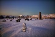 20180128_Norway_1149_portfolio