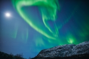 20180128_Norway_1566_portfolio