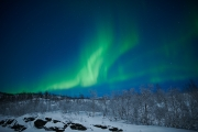 20180128_Norway_1593_portfolio